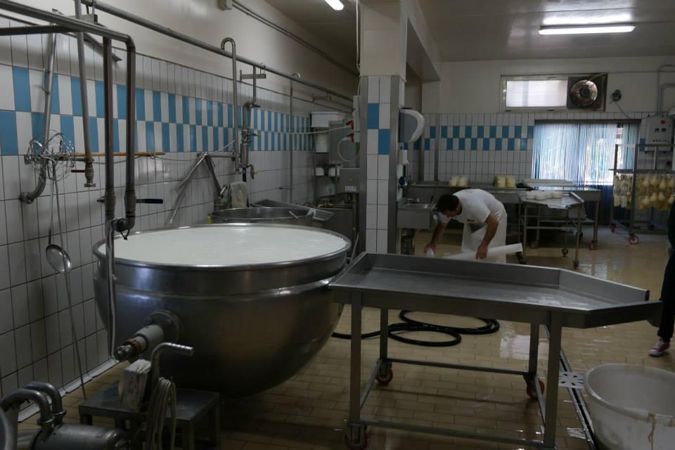 In laboratorio per trasformare il latte